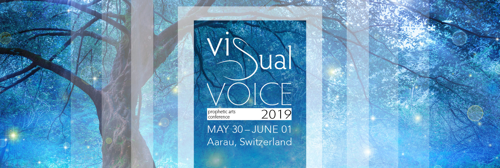 Visual Voice 2019